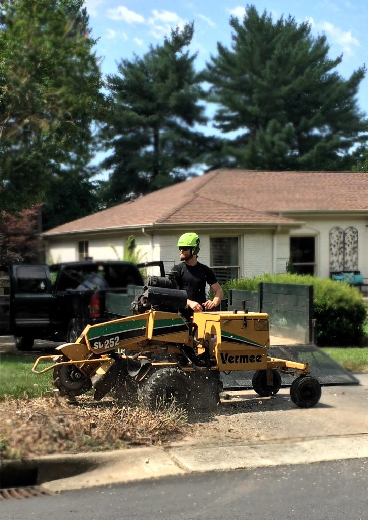 Stump Grinding Service in Charlotte, North Carolina